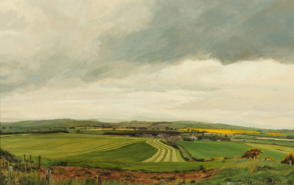Cheviot Landscape at Holborn Grange   Acrylic on Paper   1998   22 x 35 cms   Private Collection DMW