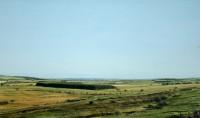Northumbrian Landscape   Acrylic    1982   Newcastle University